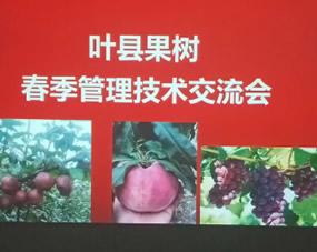 在叶县召开技术交流会