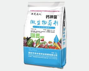 钙钾菌生物菌肥